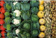 MABEWO AG Landwirtschaft neu gedacht