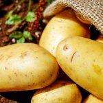 Kartoffelanbau / Pixabay