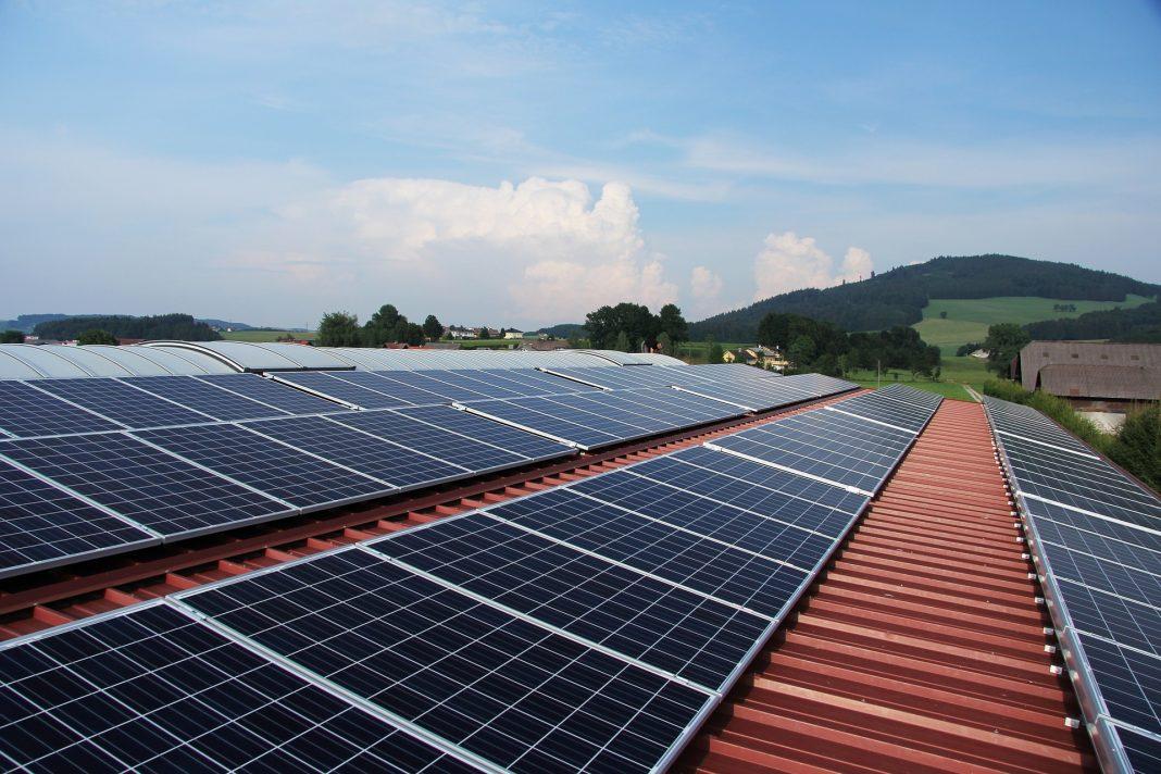 Photovoltaik und Indoor-Farming revolutionieren die Landwirtschaft
