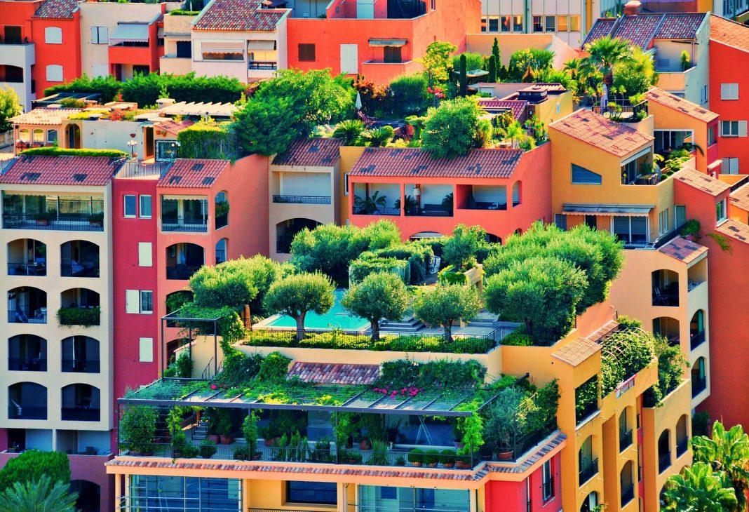 Landwirtschaft: Atemberaubende grüne Dächer Berlins